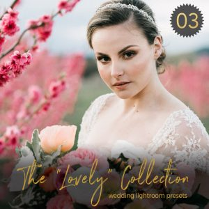 The Lovely Collection Lightroom Wedding Presets