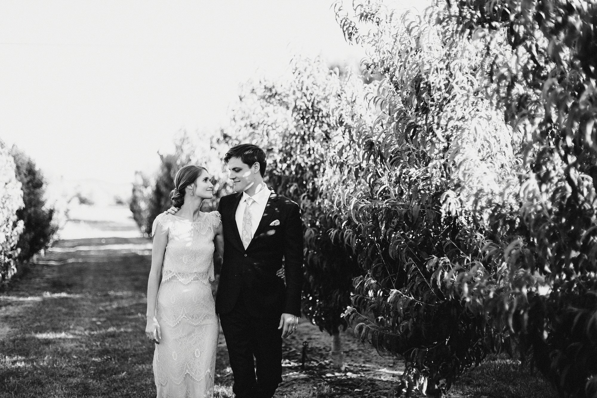 brisbane wedding photographer cost