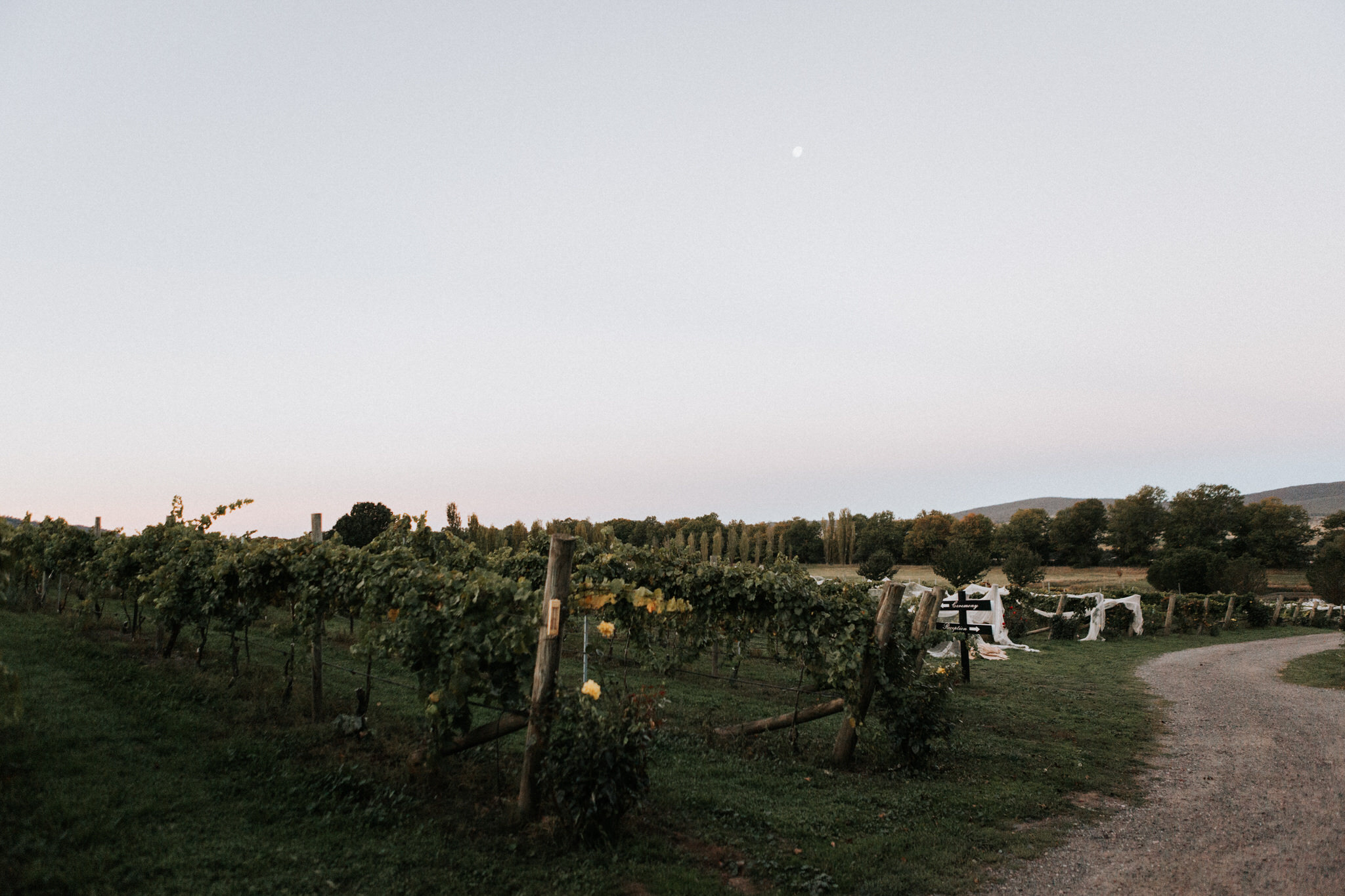 Lake George Winery, Brisbane, Sunshine Coast, Gold Coast wedding photography, maleny wedding photographer, montville, noosa, hipster, boho, natural, candid, top wedding photographer