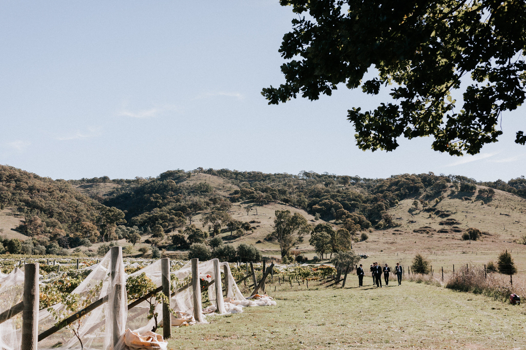 Canberra Wedding Photographer, Southern Highlands wedding, bowral wedding photographer, engagement session, natural, destination wedding, candid, documentary, fun