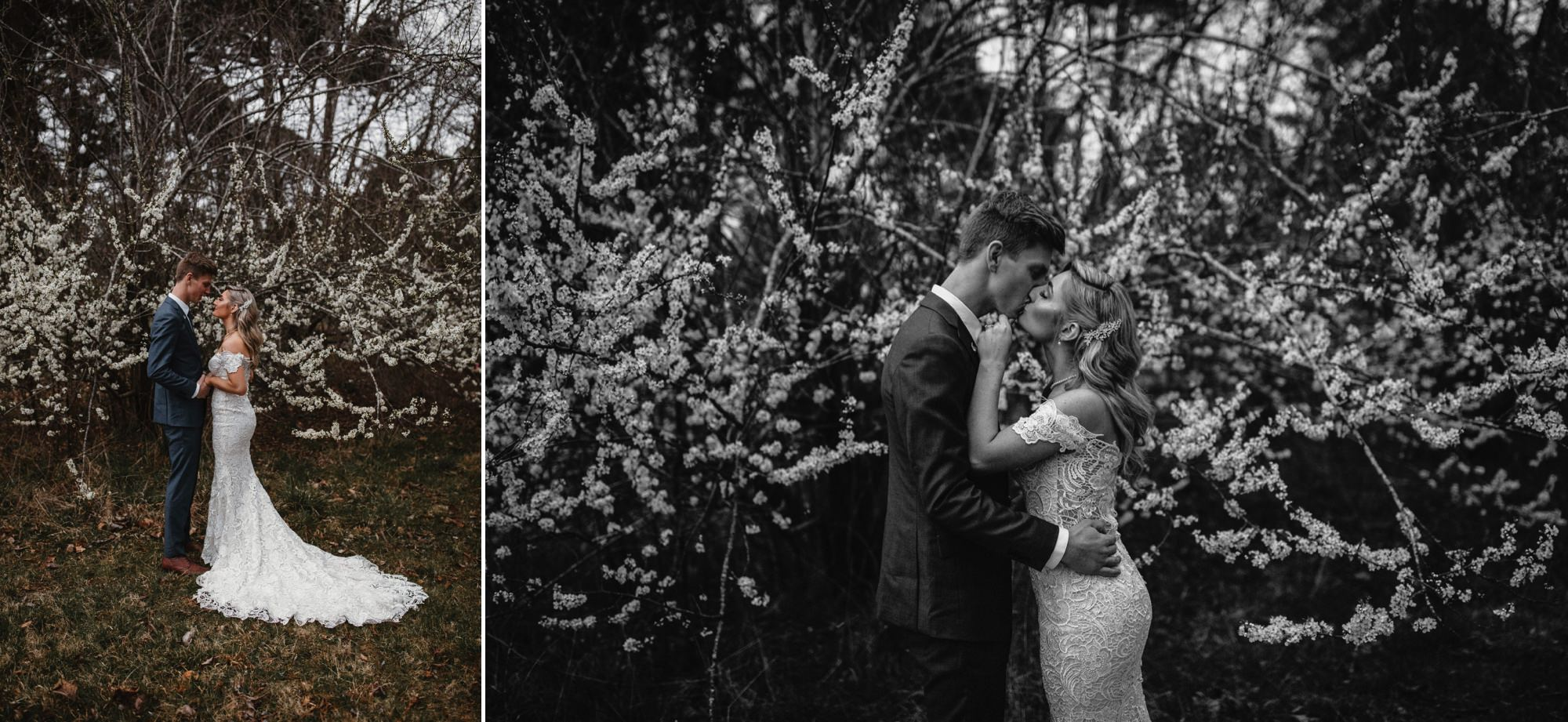 A moody spring Montrose Berry Farm by Sunshine Coast Wedding Photographer Shae Estella Photo