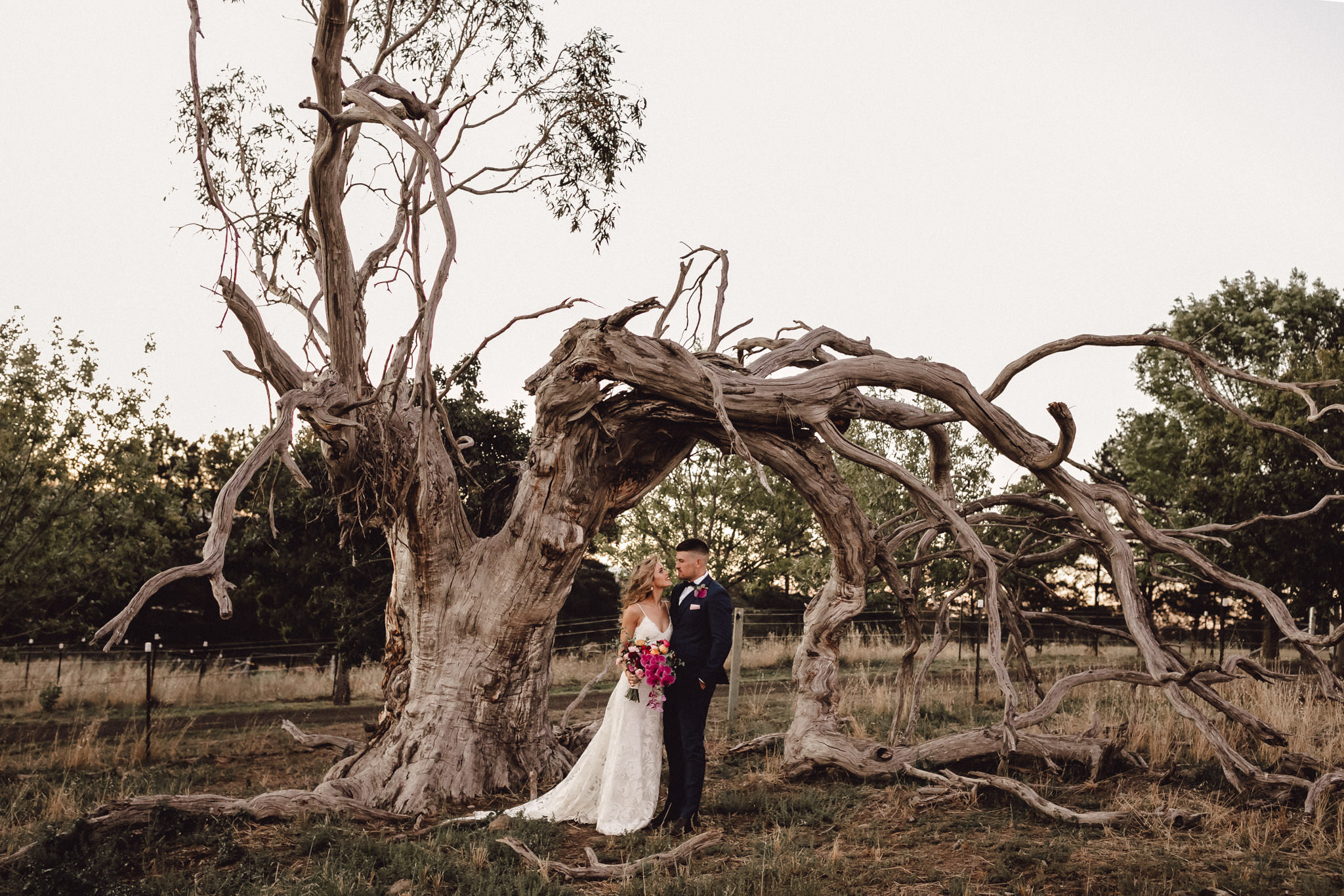 Bride, groom, old tree, backyard wedding, grace loves lace, shae estella photo, maleny, sunshinne coast